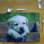 Bespoke Place mat Puppy personalised