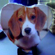 Bespoke heart slate image dog pet image